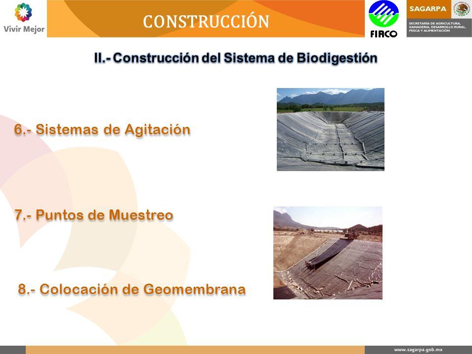 CONSTRUCCIÓN 6.- Sistemas de Agitación 7.- Puntos de Muestreo 8.- Colocación de Geomembrana