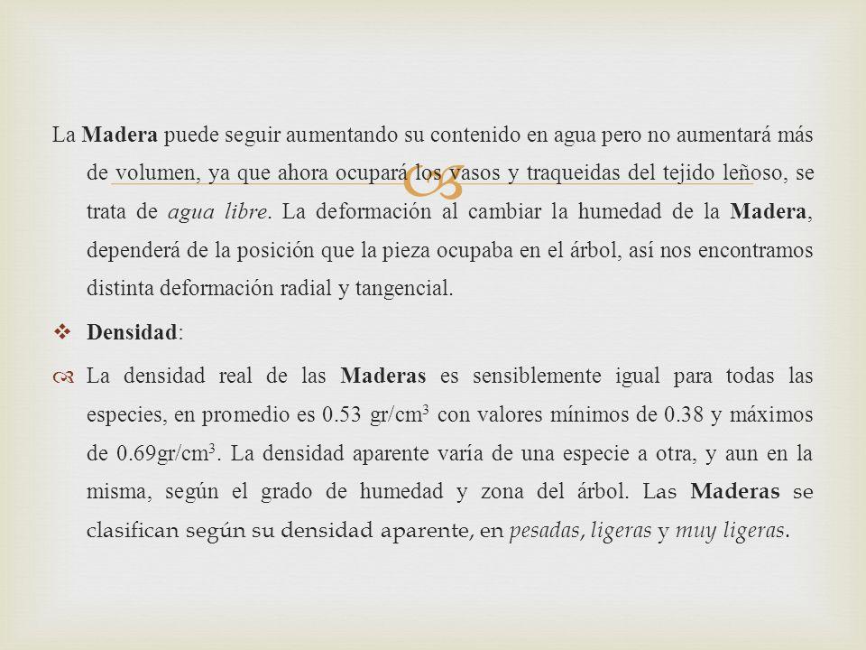 La Madera puede seguir aumentando su contenido en agua pero no aumentará más de volumen, ya que ahora ocupará los vasos y traqueidas del tejido leñoso, se trata de agua libre.
