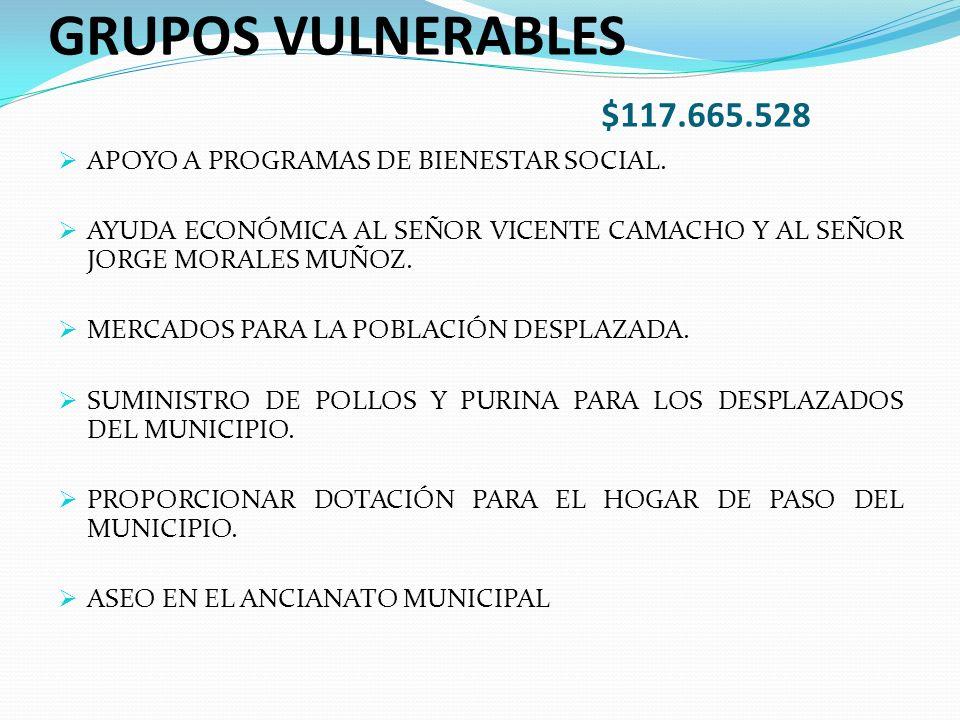 GRUPOS VULNERABLES $117.665.528 APOYO A PROGRAMAS DE BIENESTAR SOCIAL.