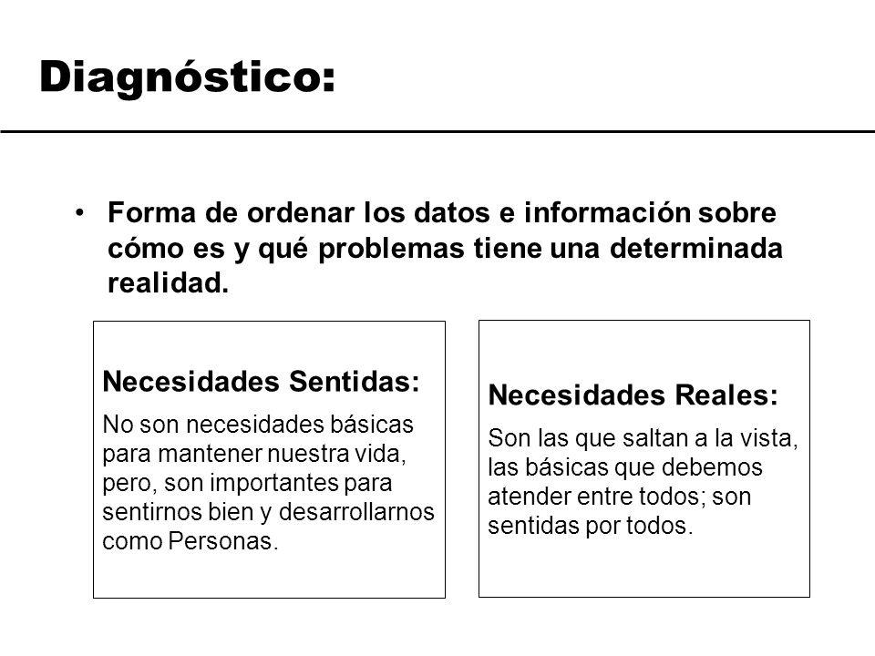 Diagnóstico: Forma de ordenar los datos e información sobre cómo es y qué problemas tiene una determinada realidad. Necesidades Sentidas: No son neces