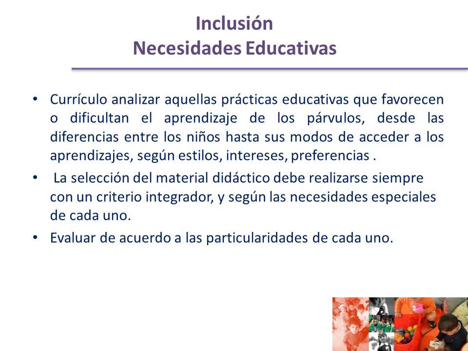 Inclusión Necesidades Educativas Currículo analizar aquellas prácticas educativas que favorecen o dificultan el aprendizaje de los párvulos, desde las diferencias entre los niños hasta sus modos de acceder a los aprendizajes, según estilos, intereses, preferencias.