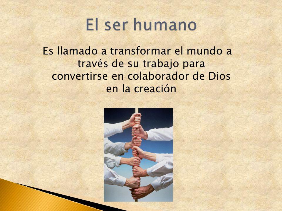 Es llamado a transformar el mundo a través de su trabajo para convertirse en colaborador de Dios en la creación