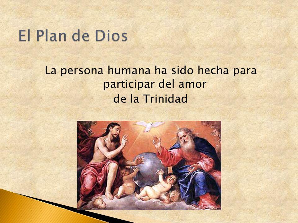 La persona humana ha sido hecha para participar del amor de la Trinidad