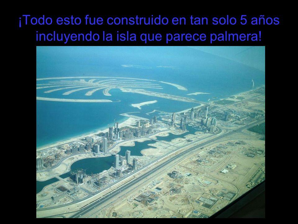 ¡Todo esto fue construido en tan solo 5 años incluyendo la isla que parece palmera!