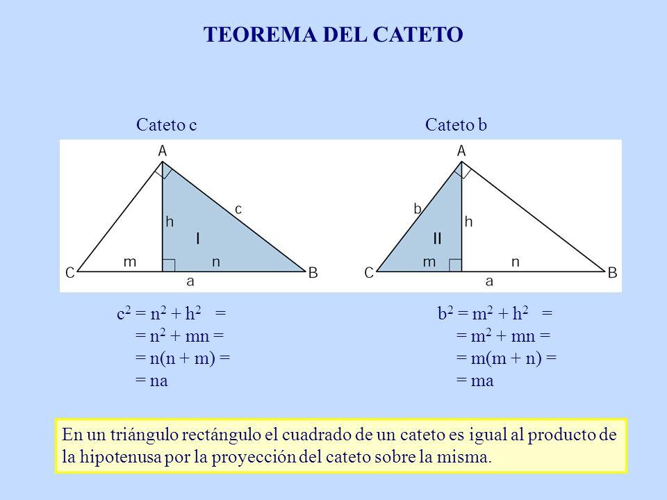 Cateto cCateto b c 2 = n 2 + h 2 = = n 2 + mn = = n(n + m) = = na b 2 = m 2 + h 2 = = m 2 + mn = = m(m + n) = = ma En un triángulo rectángulo el cuadr
