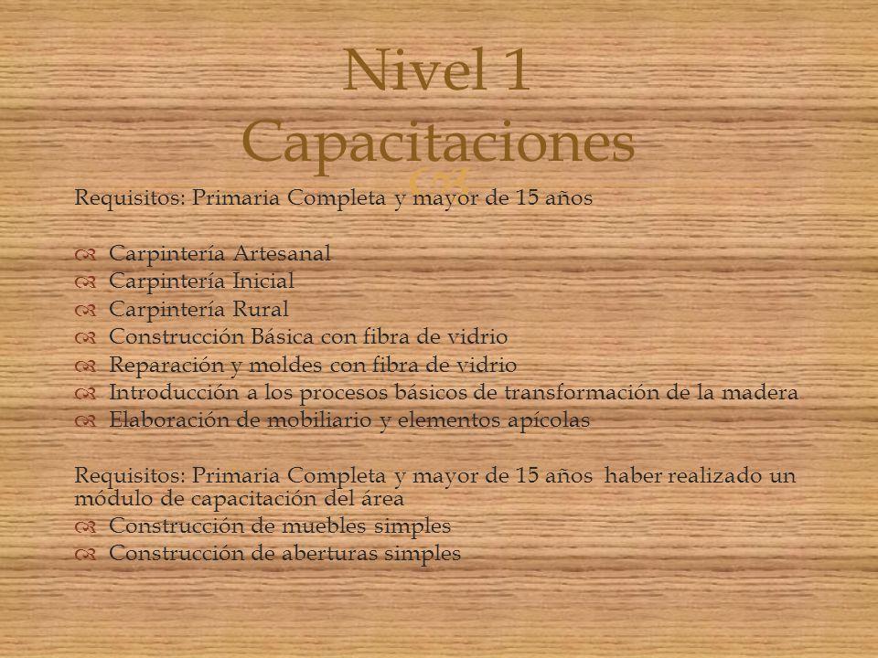 Requisitos: Primaria Completa y mayor de 15 años Carpintería Artesanal Carpintería Inicial Carpintería Rural Construcción Básica con fibra de vidrio R