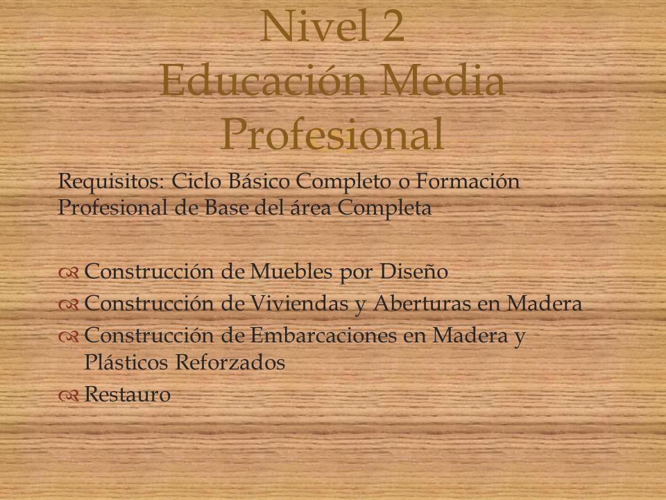 Requisitos: Ciclo Básico Completo o Formación Profesional de Base del área Completa Construcción de Muebles por Diseño Construcción de Viviendas y Abe