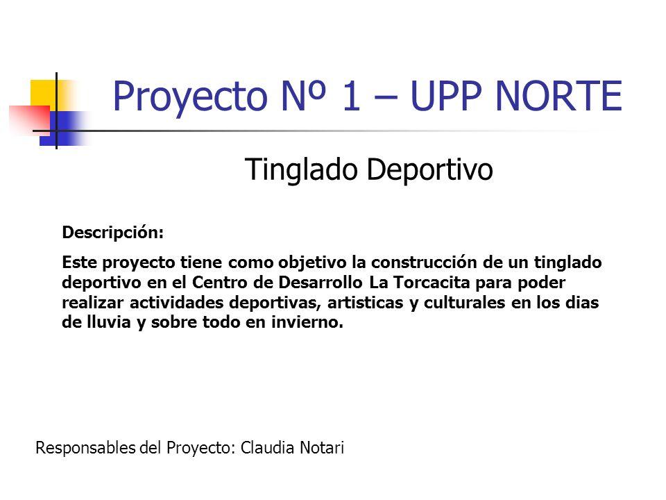 Proyecto Nº 2 – UPP NORTE Proyecto Deportivo Barrio Nuevo Descripción: Este proyecto tiene como fin la construcción de un local para realizar actividades deportivas, artisticas y culturales para lograr colaborar con las necesidades de adultos y niños.