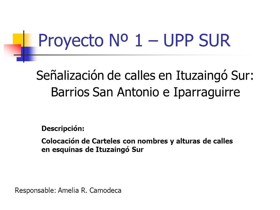 Proyecto Nº 1 – UPP SUR Señalización de calles en Ituzaingó Sur: Barrios San Antonio e Iparraguirre Responsable: Amelia R. Camodeca Descripción: Coloc