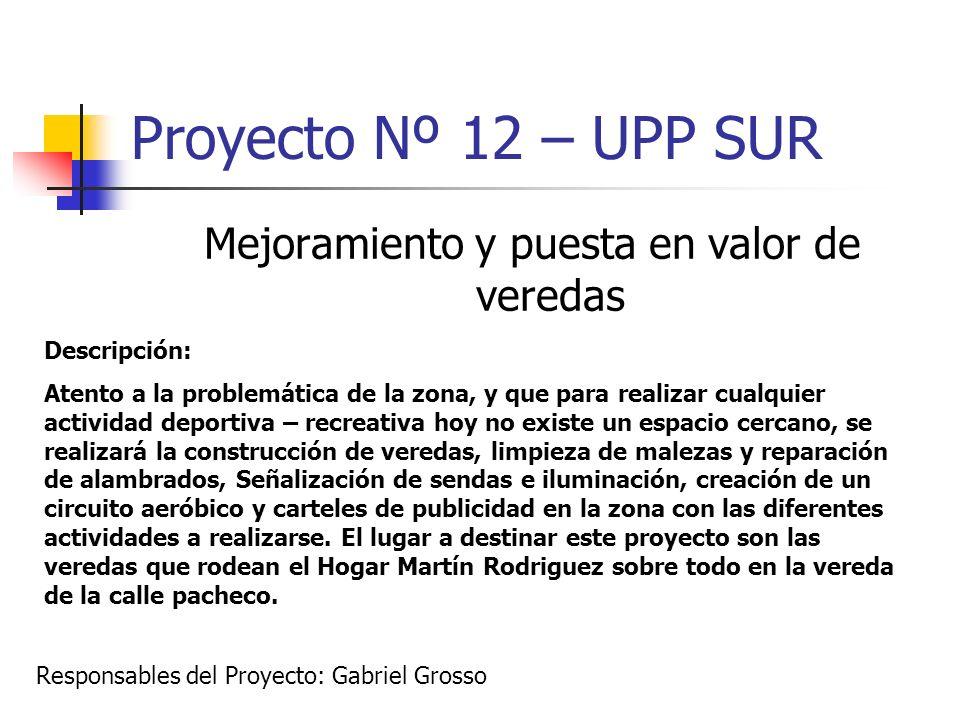 Proyecto Nº 12 – UPP SUR Mejoramiento y puesta en valor de veredas Descripción: Atento a la problemática de la zona, y que para realizar cualquier act