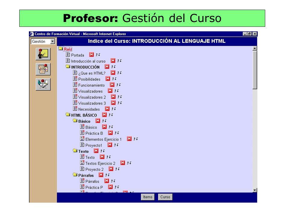 Profesor: Gestión del Curso