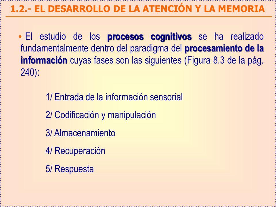 1.2.- EL DESARROLLO DE LA ATENCIÓN Y LA MEMORIA procesos cognitivos procesamiento de la información El estudio de los procesos cognitivos se ha realiz