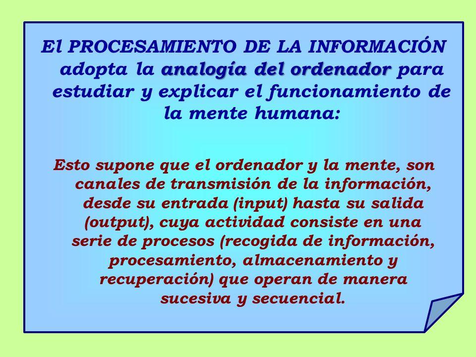 analogía del ordenador El PROCESAMIENTO DE LA INFORMACIÓN adopta la analogía del ordenador para estudiar y explicar el funcionamiento de la mente huma