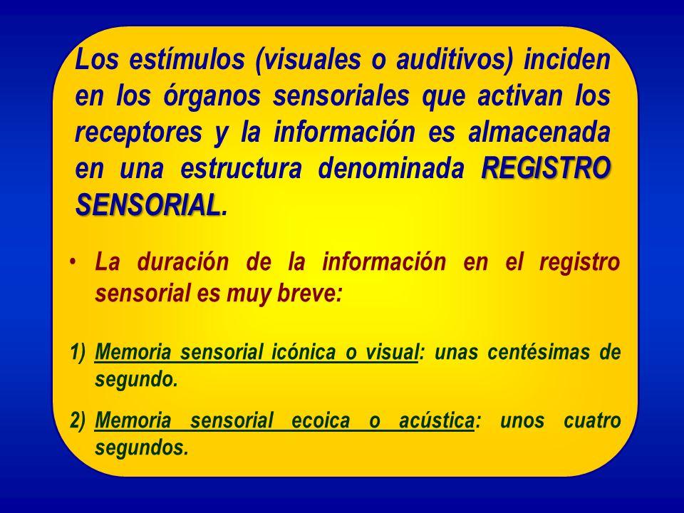 REGISTRO SENSORIAL Los estímulos (visuales o auditivos) inciden en los órganos sensoriales que activan los receptores y la información es almacenada e