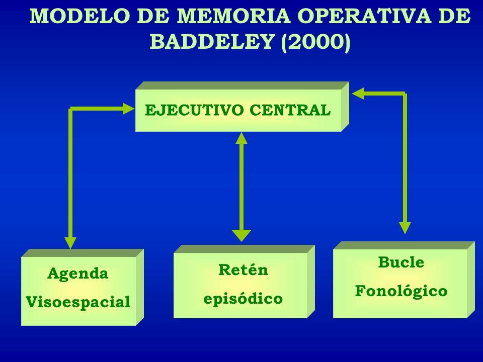 MODELO DE MEMORIA OPERATIVA DE BADDELEY (2000) Agenda Visoespacial Retén episódico Bucle Fonológico EJECUTIVO CENTRAL