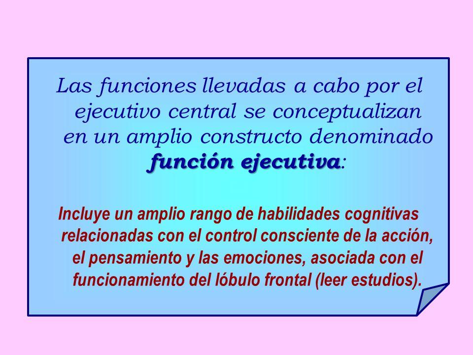 función ejecutiva Las funciones llevadas a cabo por el ejecutivo central se conceptualizan en un amplio constructo denominado función ejecutiva : Incl