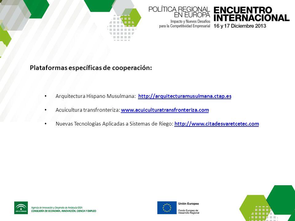 Plataformas específicas de cooperación: Arquitectura Hispano Musulmana: http://arquitecturamusulmana.ctap.eshttp://arquitecturamusulmana.ctap.es Acuic