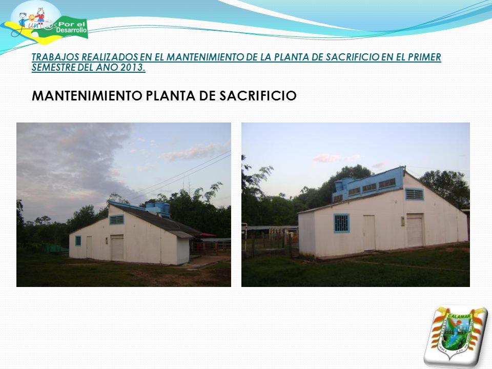 TRABAJOS REALIZADOS EN EL MANTENIMIENTO DE LA PLANTA DE SACRIFICIO EN EL PRIMER SEMESTRE DEL ANO 2013.