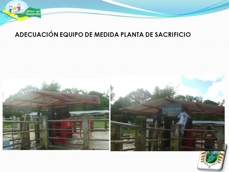 ADECUACIÓN EQUIPO DE MEDIDA PLANTA DE SACRIFICIO