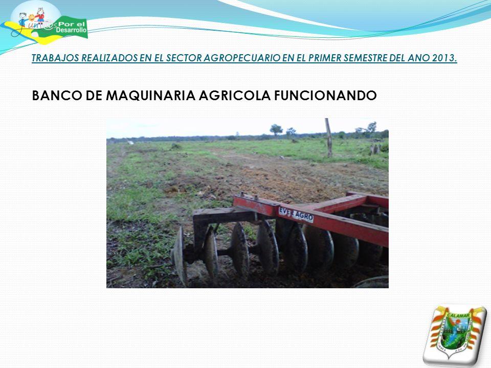 TRABAJOS REALIZADOS EN EL SECTOR AGROPECUARIO EN EL PRIMER SEMESTRE DEL ANO 2013. BANCO DE MAQUINARIA AGRICOLA FUNCIONANDO