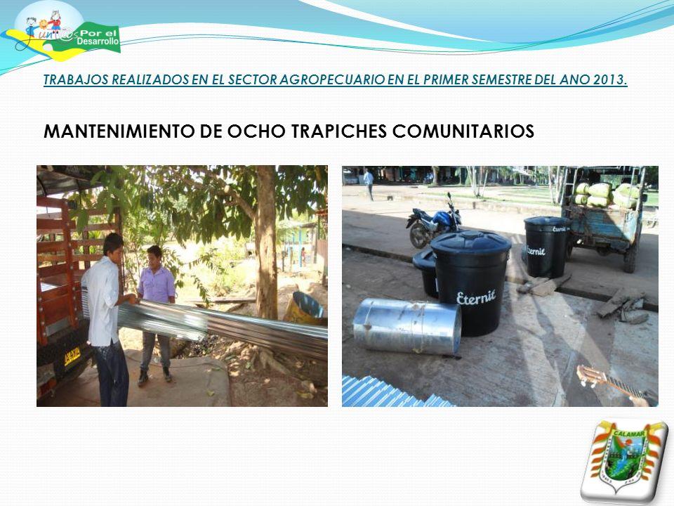 TRABAJOS REALIZADOS EN EL SECTOR AGROPECUARIO EN EL PRIMER SEMESTRE DEL ANO 2013. MANTENIMIENTO DE OCHO TRAPICHES COMUNITARIOS