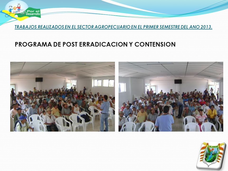 TRABAJOS REALIZADOS EN EL SECTOR AGROPECUARIO EN EL PRIMER SEMESTRE DEL ANO 2013. PROGRAMA DE POST ERRADICACION Y CONTENSION