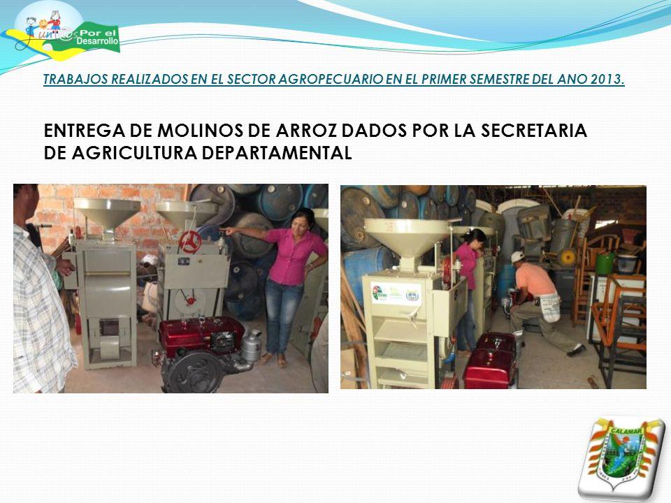 TRABAJOS REALIZADOS EN EL SECTOR AGROPECUARIO EN EL PRIMER SEMESTRE DEL ANO 2013. ENTREGA DE MOLINOS DE ARROZ DADOS POR LA SECRETARIA DE AGRICULTURA D
