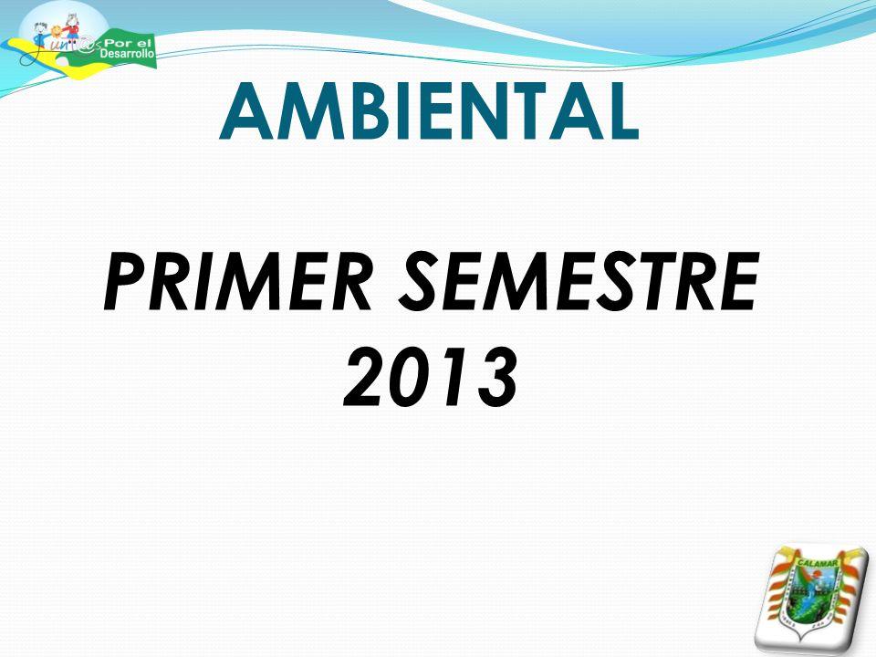 AMBIENTAL PRIMER SEMESTRE 2013