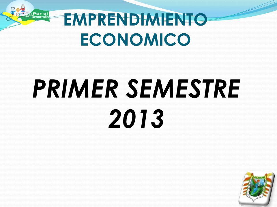 EMPRENDIMIENTO ECONOMICO PRIMER SEMESTRE 2013