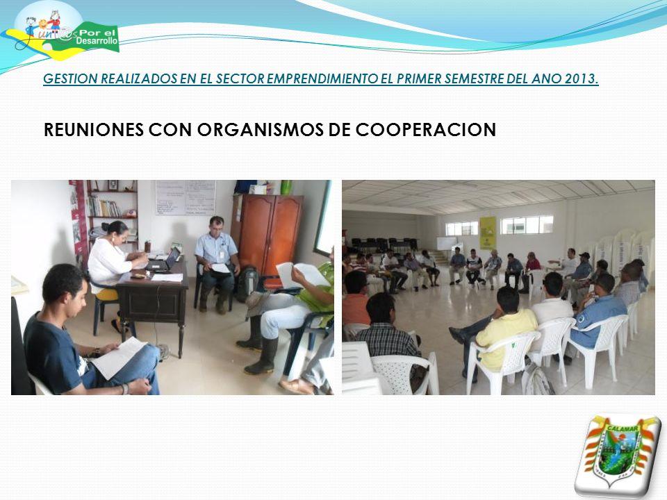 GESTION REALIZADOS EN EL SECTOR EMPRENDIMIENTO EL PRIMER SEMESTRE DEL ANO 2013. REUNIONES CON ORGANISMOS DE COOPERACION
