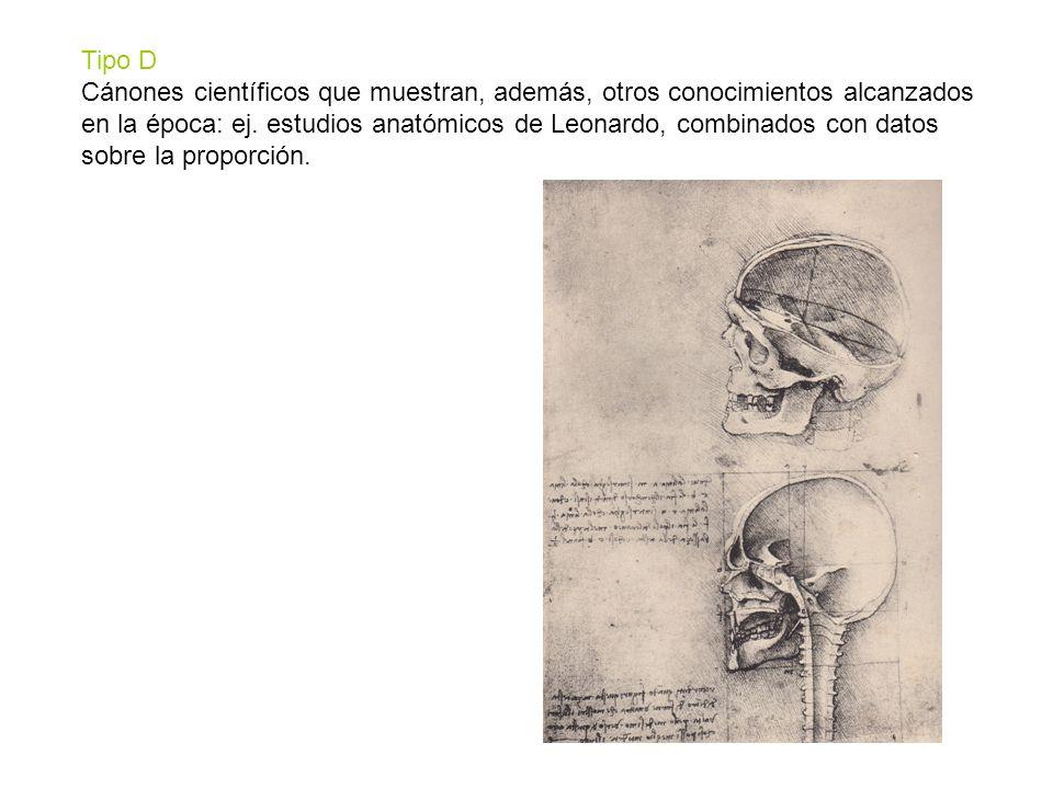 Tipo D Cánones científicos que muestran, además, otros conocimientos alcanzados en la época: ej. estudios anatómicos de Leonardo, combinados con datos