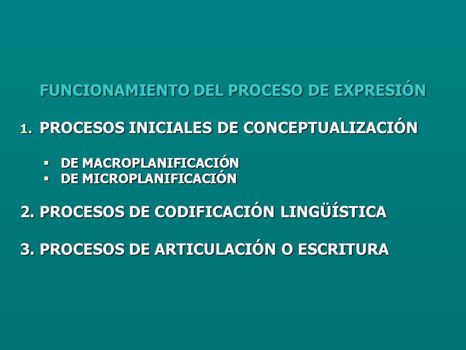 FUNCIONAMIENTO DEL PROCESO DE EXPRESIÓN 1.
