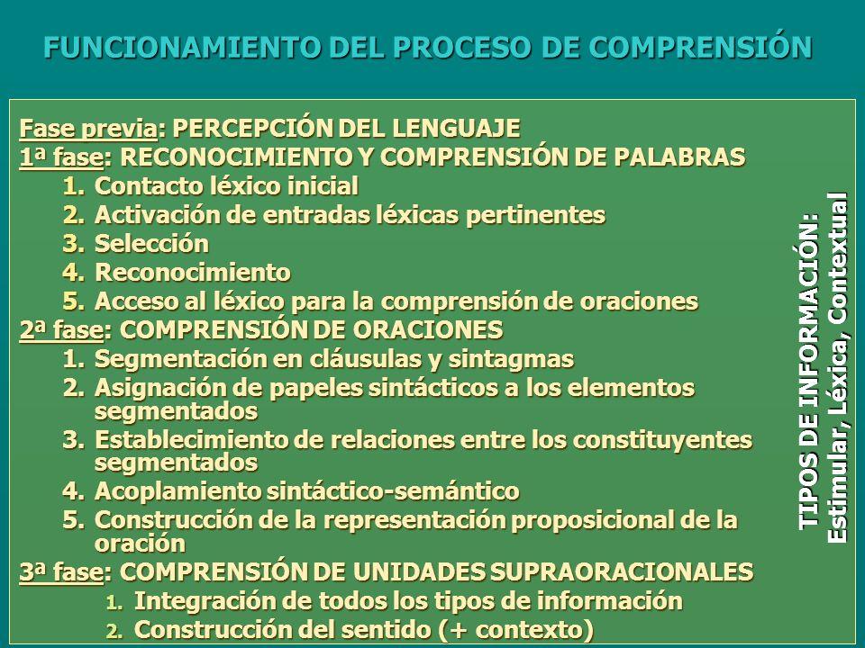 Fase previa: PERCEPCIÓN DEL LENGUAJE 1ª fase: RECONOCIMIENTO Y COMPRENSIÓN DE PALABRAS 1.Contacto léxico inicial 2.Activación de entradas léxicas pertinentes 3.Selección 4.Reconocimiento 5.Acceso al léxico para la comprensión de oraciones 2ª fase: COMPRENSIÓN DE ORACIONES 1.Segmentación en cláusulas y sintagmas 2.Asignación de papeles sintácticos a los elementos segmentados 3.Establecimiento de relaciones entre los constituyentes segmentados 4.Acoplamiento sintáctico-semántico 5.Construcción de la representación proposicional de la oración 3ª fase: COMPRENSIÓN DE UNIDADES SUPRAORACIONALES 1.