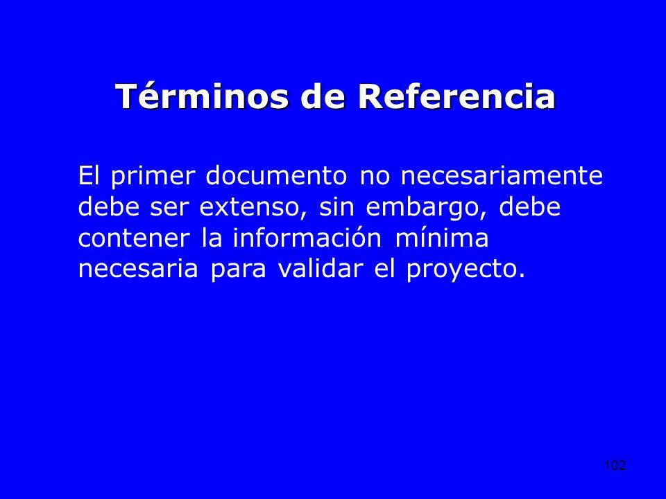 102 El primer documento no necesariamente debe ser extenso, sin embargo, debe contener la información mínima necesaria para validar el proyecto. Térmi