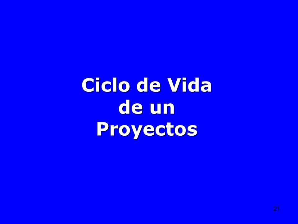 21 Ciclo de Vida de un Proyectos