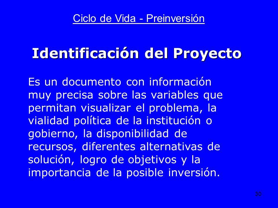 30 Ciclo de Vida - Preinversión Es un documento con información muy precisa sobre las variables que permitan visualizar el problema, la vialidad polít