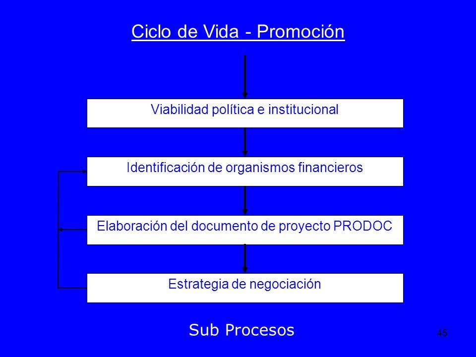 45 Ciclo de Vida - Promoción Sub Procesos Viabilidad política e institucional Identificación de organismos financieros Elaboración del documento de pr
