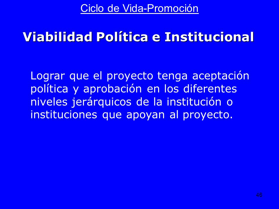 46 Ciclo de Vida-Promoción Lograr que el proyecto tenga aceptación política y aprobación en los diferentes niveles jerárquicos de la institución o ins