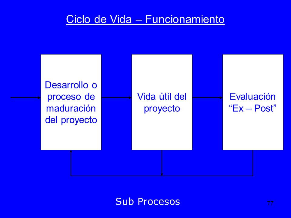 77 Ciclo de Vida – Funcionamiento Sub Procesos Desarrollo o proceso de maduración del proyecto Vida útil del proyecto Evaluación Ex – Post