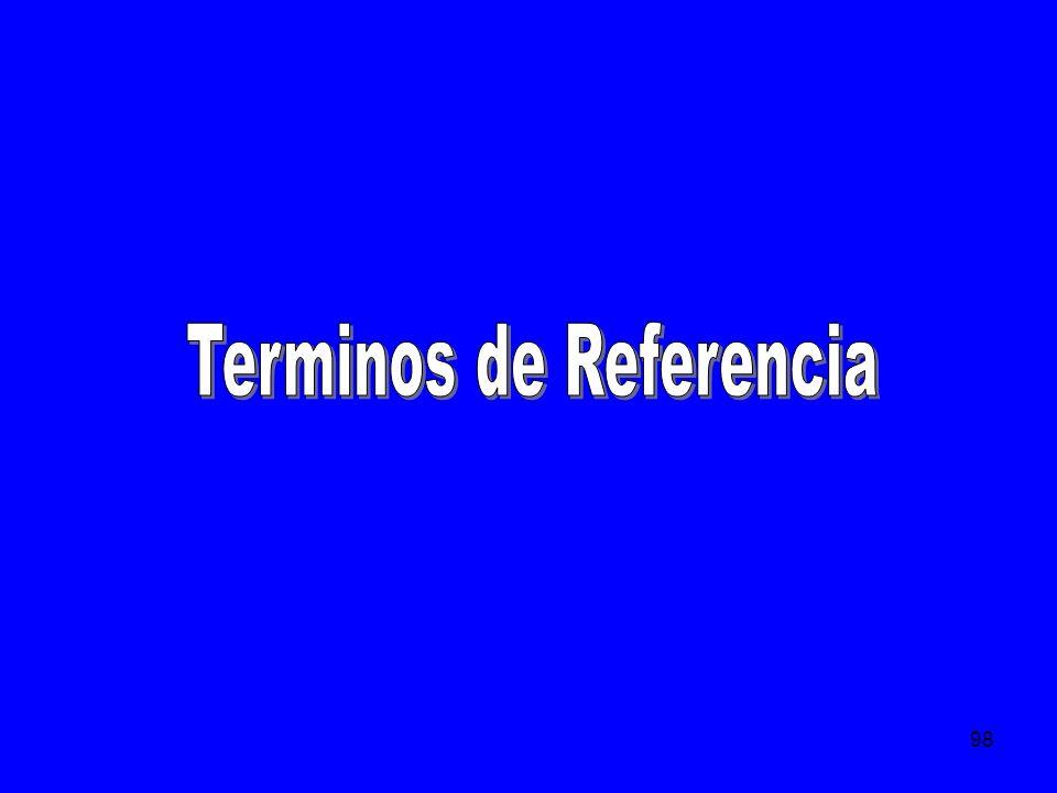 99 Hay dos tipos de Términos: Los que sirven de base (consulta) para el Dueño del proyecto.