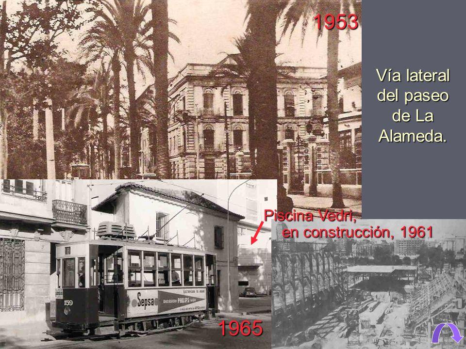 1925. Vía central del paseo de La Alameda. 1920. Paseo lateral, o de las palmeras, de La Alameda.