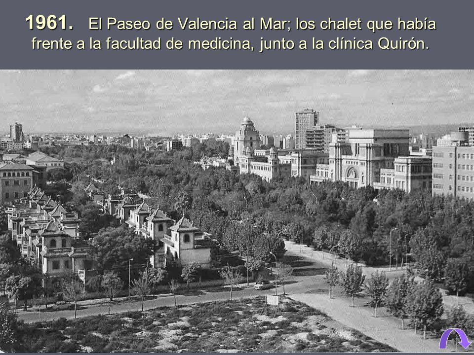 1949 El Paseo de Valencia al Mar, hoy avenida de Blasco Ibáñez, delante de las facultades de Ciencias (inaugurada en 1944) y de Medicina (inaugurada e