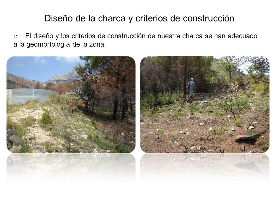 Diseño de la charca y criterios de construcción o El diseño y los criterios de construcción de nuestra charca se han adecuado a la geomorfología de la zona.
