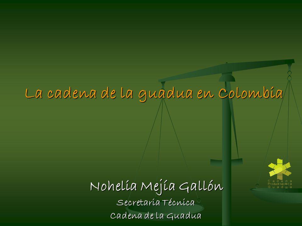 La cadena de la guadua en Colombia Nohelia Mejía Gallón Secretaria Técnica Cadena de la Guadua