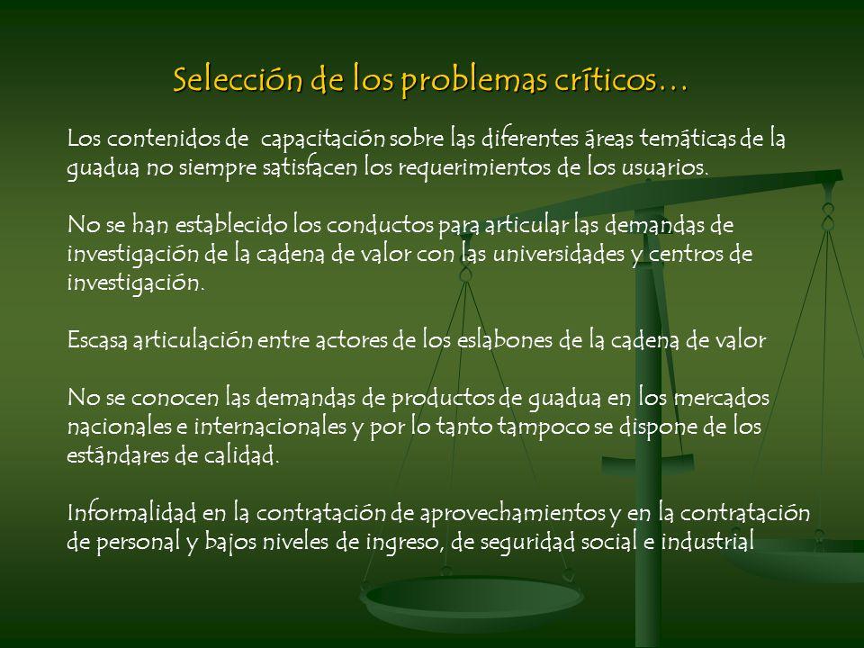 Selección de los problemas críticos… Los contenidos de capacitación sobre las diferentes áreas temáticas de la guadua no siempre satisfacen los requerimientos de los usuarios.