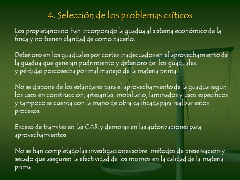 4. Selección de los problemas críticos Los propietarios no han incorporado la guadua al sistema económico de la finca y no tienen claridad de como hac