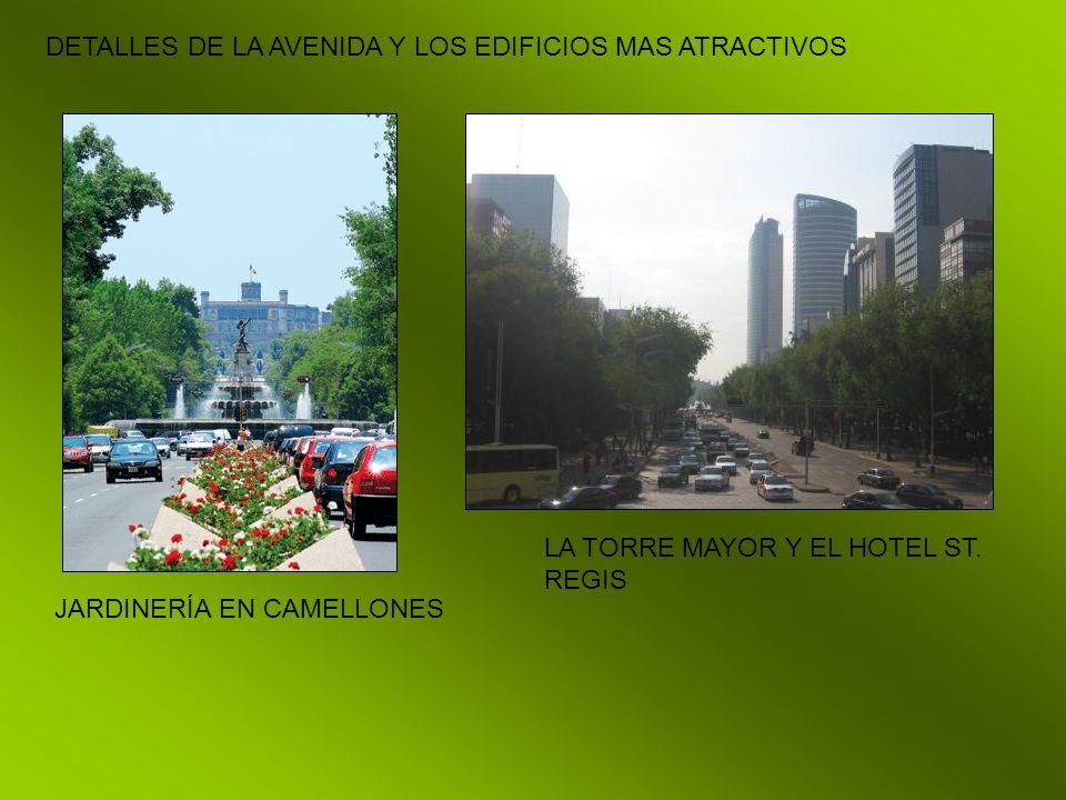 DETALLES DE LA AVENIDA Y LOS EDIFICIOS MAS ATRACTIVOS JARDINERÍA EN CAMELLONES LA TORRE MAYOR Y EL HOTEL ST. REGIS