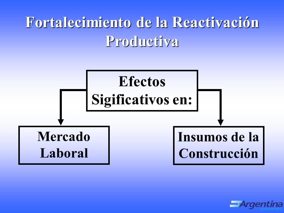 Insumos de la Construcción Mercado Laboral Fortalecimiento de la Reactivación Productiva Efectos Sigificativos en: