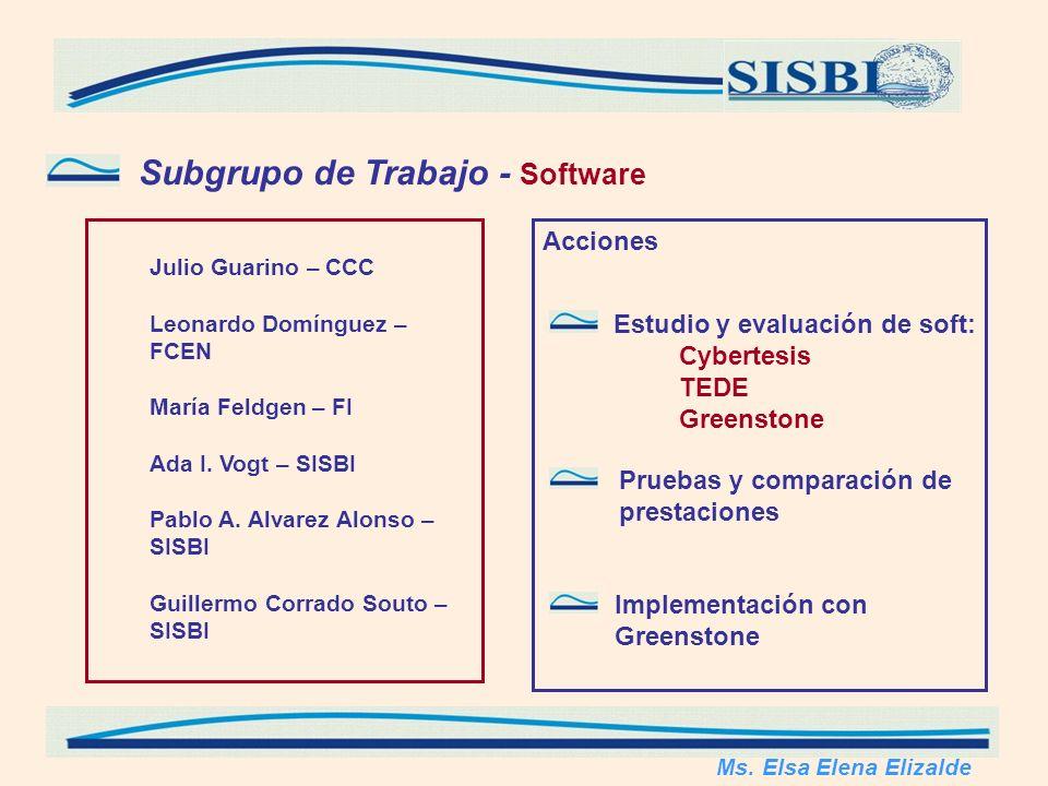 Subgrupo de Trabajo - Software Julio Guarino – CCC Leonardo Domínguez – FCEN María Feldgen – FI Ada I.