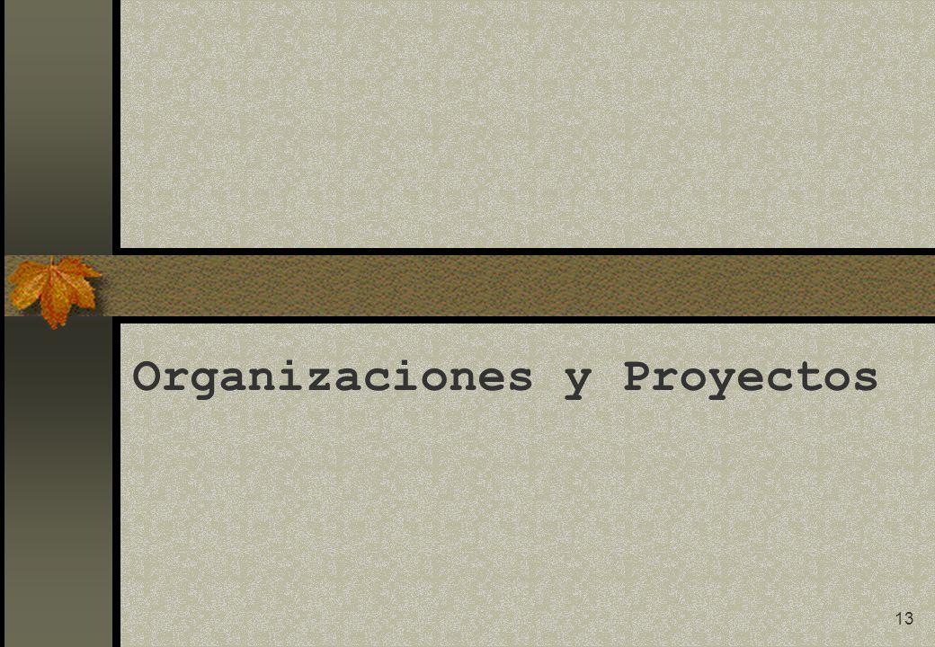 13 Organizaciones y Proyectos